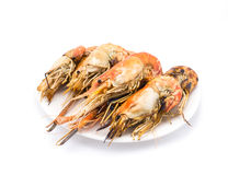Grilled shrimps on the white plate Royalty Free Stock Image