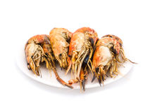 Grilled shrimps on the white plate Stock Photos