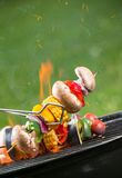 Grilled skewer Royalty Free Stock Images