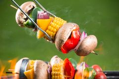 Grilled skewer. Grilled vegetarian skewer on fire royalty free stock photography