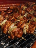 Grilled skewers, closeup stock image