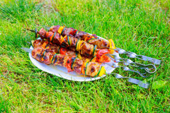 Grilled skewers on the plate made with pork chicken, bacon and vegetables. Royalty Free Stock Image