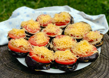 Grilled slices of eggplant with tomato, spicy sauce and grated cheese. Royalty Free Stock Photography