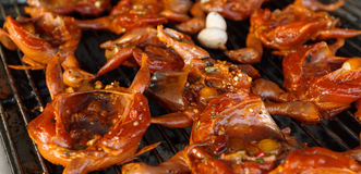 Grilled small asian birds in spicy marinade Royalty Free Stock Photos