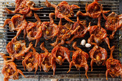 Grilled small asian birds in spicy marinade Stock Image