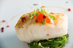 Grilled Snow Fish with  sauce. Stock Photography
