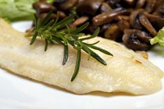 Grilled sole fish Royalty Free Stock Photography