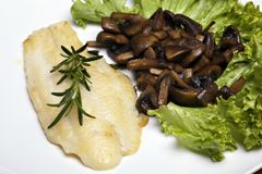 Grilled sole fish Royalty Free Stock Photo