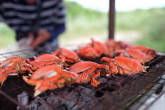Grilled Spanner Crab (red Frog Crab)