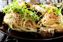 Grilled spicy chicken legs with herbs Stock Image
