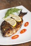 Grilled  spicy dorado Stock Image