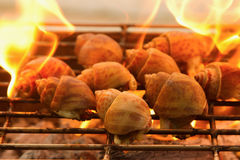 Grilled spotted babylon shell  on flaming Royalty Free Stock Photography