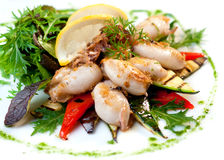 Grilled squid. With vegetable on plate Stock Image