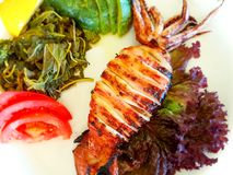 Grilled squid. Grilled calamari squid with salad royalty free stock photography