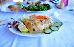 Grilled squid with carrots, onion, cucumber and lemon stock images