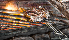 Grilled Squid on Fire. Detail of delicious squids grilling on barbecue Stock Images