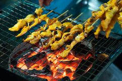 Grilled squid hand cooking on stove, Thai cuisine traditional street seafood stick stock photo