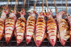 Grilled squid Stock Photography