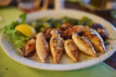 Grilled squid. In one of the restaurants in Croatia stock image