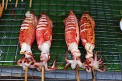 Grilled squid for sale Royalty Free Stock Photos