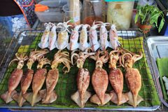 Grilled squid shop Royalty Free Stock Photo