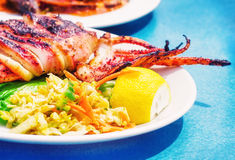 Grilled squid with a side salad Stock Photos