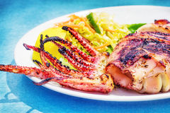 Grilled squid with a side salad Stock Images