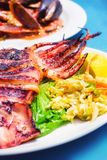 Grilled squid with a side salad Royalty Free Stock Image