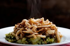Grilled squid on sprouts Stock Images
