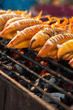 Grilled squid on stove Stock Photography