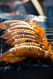 Grilled squid on stove Stock Photo
