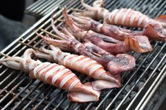 Grilled squid. Street foods in Thialand. Grilled squid. Street foods in Thialand Stock Photo