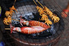Grilled squids Royalty Free Stock Photo