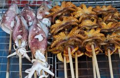 Grilled Squids and Octopus Royalty Free Stock Images