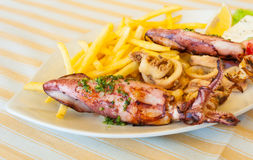 Grilled squids plate Stock Photo