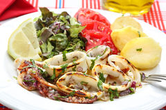 Grilled squids with salad and potatoes - portuguese style Royalty Free Stock Photos