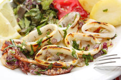 Grilled squids with salad and potatoes - portuguese style Stock Photos