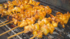 Grilled squids skewers. Stock Image