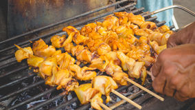 Grilled squids skewers. Royalty Free Stock Photography