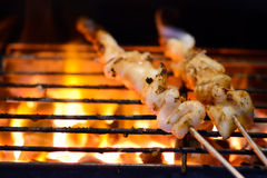 Grilled squids Royalty Free Stock Image