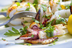 Grilled squids with vegetables Royalty Free Stock Photo