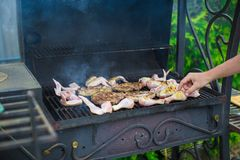 Grilled steak and chiken cooking on an open barbecue Royalty Free Stock Photo