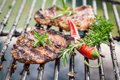 Grilled steak with chilli and rosemary Royalty Free Stock Image