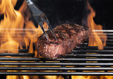 Grilled Steak. A New York strip steak grilled over open flames being pulled from grill with stainless steel barbecue fork royalty free stock images