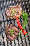 Grilled steak with rosemary and chilli Royalty Free Stock Photos