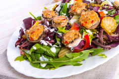 Grilled stuffed MUSHROOMS with colourful salad. A fresh Grilled stuffed MUSHROOMS with colourful salad Royalty Free Stock Photography