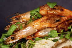 Grilled Stuffed Prawns on Bed of Asian Water Cress Stock Photos