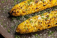 Grilled sweetcorn with butter salt and Parmesan Stock Image