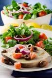 Grilled Swordfish with mixed salad Stock Photos