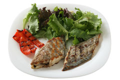 Grilled swordfish with salad Stock Image
